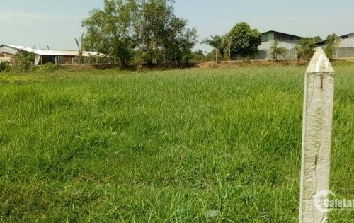 Cần bán lô đất Thái Mỹ giá 1,4tr/m2 ngay mặt tiền hẻm 8m trải nhựa . Sổ hồng sang tên ngay