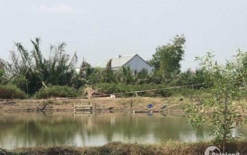 Bán gấp lô đất thổ vườn 7000m giá 3tỷ750 Hiệp Phước Nhà Bè
