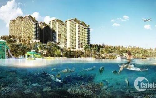 mở bán căn hộ khách sạn mặt biển mũi né phan thiết
