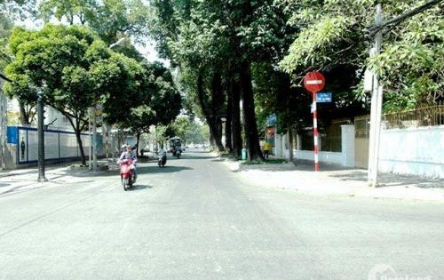 Bán nhà 2MT đường Trần Khắc Chân, Phường Tân Định, Q.1, DT: 14x23, giá 76 Tỷ TL