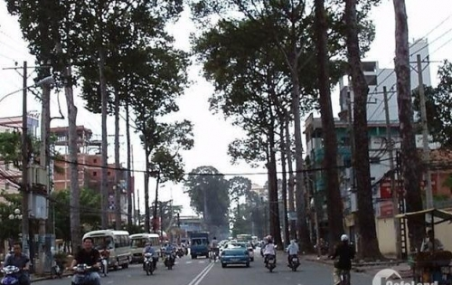Bán nhà MT Trần Quang Khải, P Tân Định, Quận 1,DT:4.2x22m,hầm 5 lầu,HĐ thuê 85tr/th, giá 28.5 tỷ.