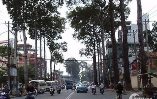 Bán nhà P.Tân Định – đường Trần Quang Khải, 1 hầm, 4 lầu. Thu nhập 80tr/tháng