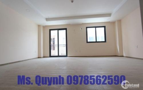Cho thuê nhà phố Hưng Phước 2, Phú Mỹ Hưng, quận 7 giá 105 triệu