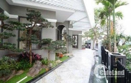 Cho thuê nhà Phố Quảng Khánh làm nhà hàng, café, spa, khách sạn, homstay, CHDV 85tr