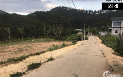 Cần bán 447,70 đất đẹp View Thung Lũng Đồi Thông Đà Lạt
