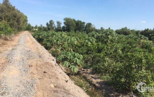 Bán đất công huyện đức hòa giá rẻ, 30x37m đường Sa Bà giá 1 tỷ 050 tr.