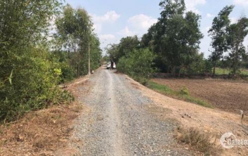 Bán đất công Đức Hòa giá rẻ, 1250m2 đường Sa Bà giá 980 triêu.
