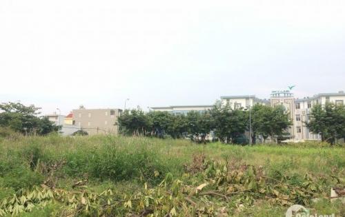 Bán nhanh hai lô đất nền nằm ngay mặt tiền đường trung tâm Đà Nẵng