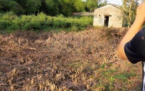 Bán đất chính chủ lô đường tránh Thủy Châu