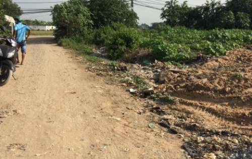 Cần tiền bán gấp lô đất tại Vĩnh Lộc B, H. Bình Chánh, Giá hữu nghị
