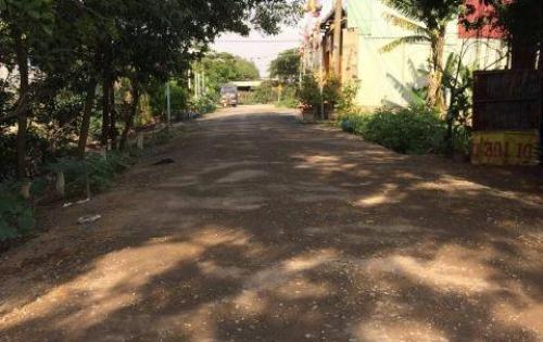 Bán đất nền tại Vĩnh Lộc, huyện Bình Chánh, Giá tốt.