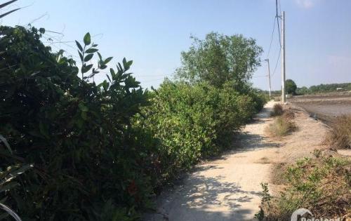 Cần BÁN GẤP lô đất 6776m2 giá SIÊU RẺ tại xã An Thới Đông, huyện Cần Giờ.