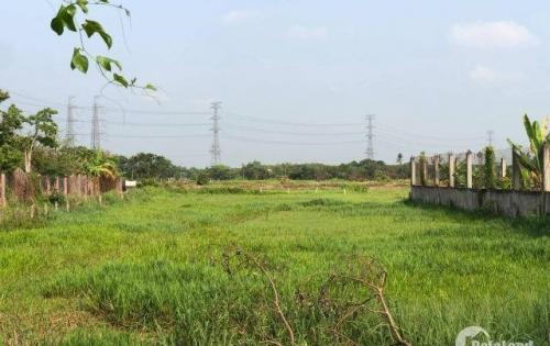 Bán đất MT đường 404 ( cầu trắng )DT 7312. Giá: 29.25 tỷ. Đường đất 8m. LH: 0856518555 ( Văn Tiên)
