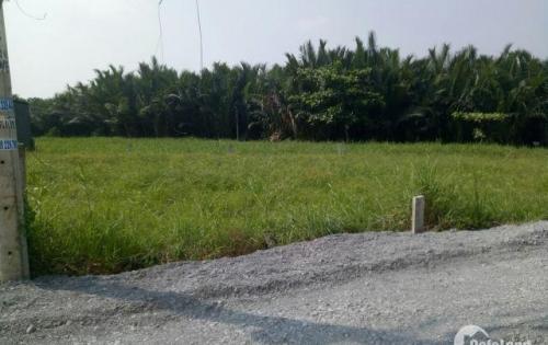 Bán gấp 3 lô đất ngay hẻm Nhơn Đức_ Nguyễn Bình. Giá từ 24tr/m2  đến 28tr/m2