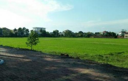 Cần bán đất tại thị trấn Long Điền, vị trí đẹp, giá tốt.