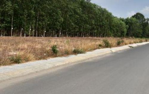 Bán đất gần QL 51, xã Lộc An, đã có sổ riêng, xây dựng liền.