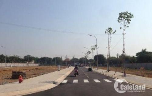 Thanh lý gấp MT đường Trần Lựu, An Phú, Q2. diện tích 90m2. XDTD. shr