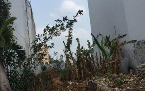 Bán đất hẻm 6m đường Nhất Chi Mai, P13, TB: 4 x 23m