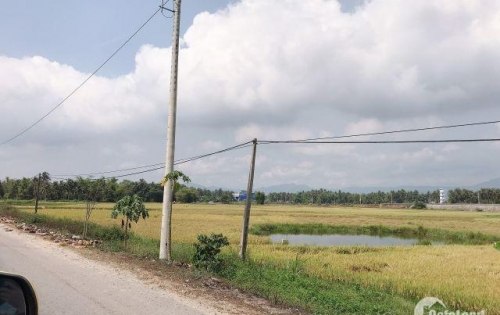 Đất nền Bình Định giai đoạn 1 , nới đáng để đầu tư an cư với sứ mệnh xanh - sạch- đẹp - sáng!