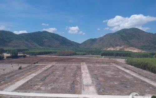 Bán đất mặt tiền đường 81 Phú Mỹ Tóc Tiên QL51 đi vào 5km giá tốt cho khách đầu tư