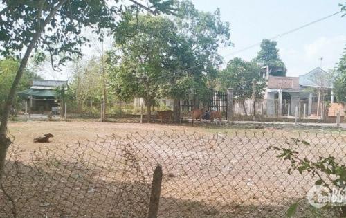 Bán đất nền Tại thị Trấn Trảng bàng tây ninh guia1 420 triệu