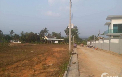 Bán gấp lô đất DT 5x20m vị trí đẹp, có sổ riêng ở Trảng Bàng, Tây Ninh