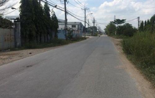 Bán Đất Sổ Riêng Đường DT768 Gần Khu Du Lịch Bưởi Tân Triều