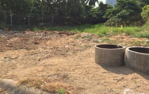Ngân hàng thanh lý gấp 5 lô đất nền Bùi Thanh Khiết,Bình Chánh 539tr/nền80m2 LH 0397245353