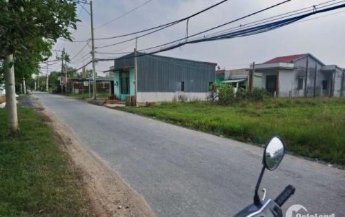 Cần tiền bán gấp 1725m2 đường Tân Liễu, Hưng Long, Bình Chánh. Giá 8.7tr/m2.
