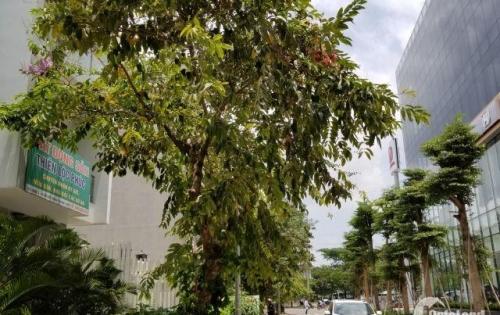 Chính chủ xoay vốn kinh doanh, cần tiền nên thiện chí bán gấp nhà kdc Ven Sông Tân Phong,