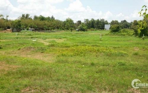Cần bán đất đường Cây Trôm Mỹ Khánh- Thái Mỹ, Huyện Củ Chi, Đường nhựa 8m, chưa đến 1 tỷ