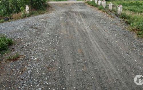 Cần bán lô đất tại đường Bình Mỹ, huyện Củ Chi, TP. HCM.