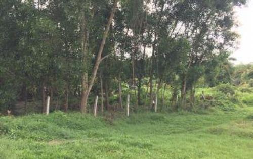 Đất Cầu Bến Nảy Tỉnh Lộ 15 Xã Phú Hòa Đông huyện Củ Chi