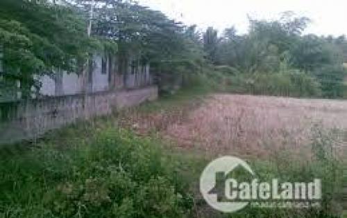 Bán đất nền tại Thôn ái mộ, Phường Bồ Đề, quận Long Biên