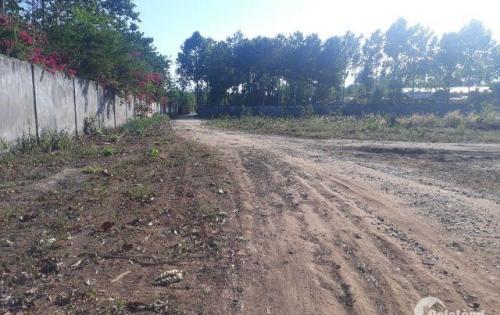 Bán 2.2 mẫu đất vườn xã Long Phước, Long Thành sổ hồng, giá tốt.
