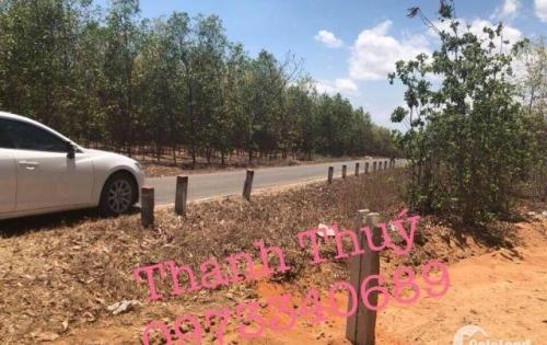 Đất liền kề sân bay Phan Thiết giá chỉ 1 tỷ/nền 1000m2 tại xã Thiện Nghiệp