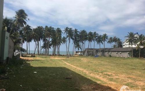Bán Đất Thổ Cư Vị Trí Đẹp Tại Hàm Tiến, Mũi Né, Phan Thiết