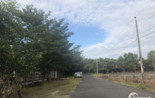 Đất cần bán cách biển Sông Lô, chợ Bình Châu, suối khoáng nóng, Irelax Bangkok Resort 1- 1,5km