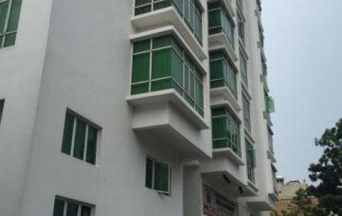 Bán gấp căn hộ chung cư HAGL1 quận 7