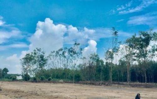 6 triệu/ m2 có ngay 100m2 đất thổ cư gần UBND phường Hắc Dịch