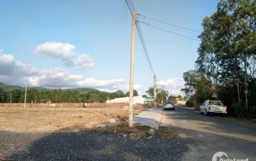 Bán đất tại Đường Hội Bài - Châu Pha - Thị xã Phú Mỹ - Bà Rịa Vũng Tàu