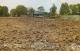 Long An: Chuyển đổi hơn 16ha đất nông nghiệp